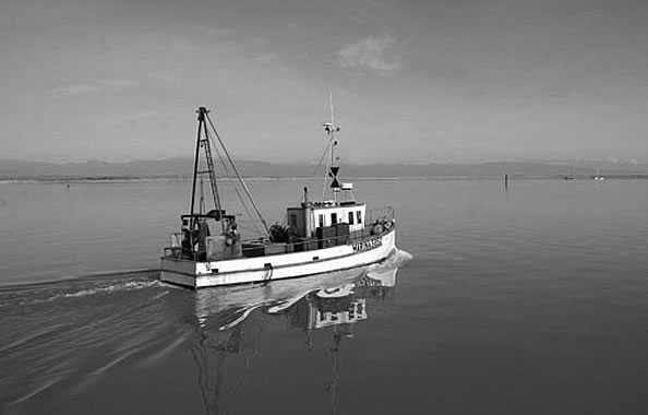 nelson_fishing_boat